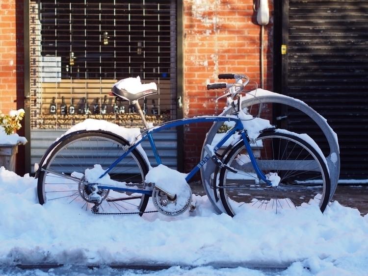frozen Schwinn - NYCSteelponies - nycsteelponies | ello