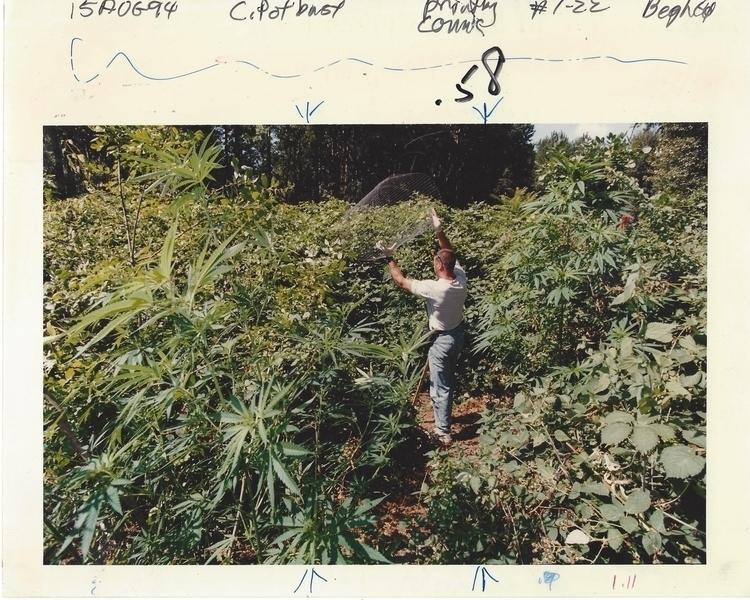 VINTAGE CANNNABIS PHOTO Vintage - ellocannabis | ello