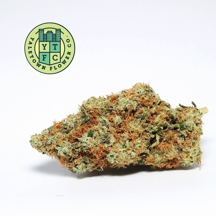 Strawberry Cough, potent newcom - ytfc | ello