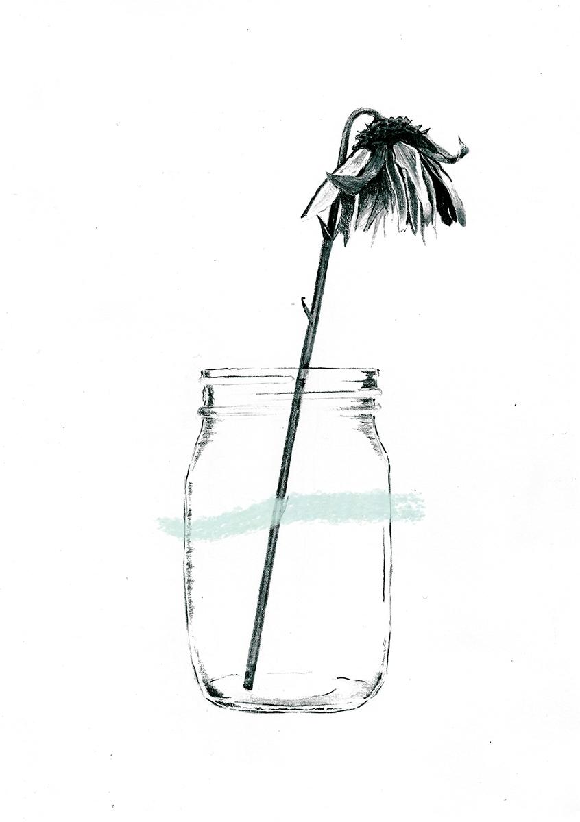Flowers - 2, art, illustration, flowers - marjanroshan | ello