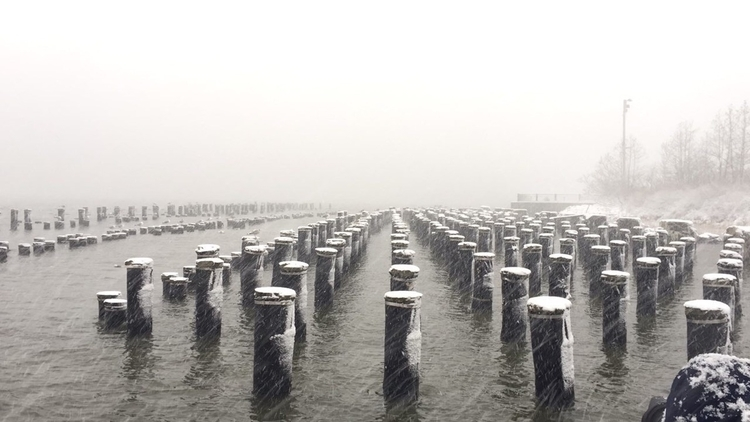 Brooklyn piers - photography, brooklynpiers - tseringzzz | ello