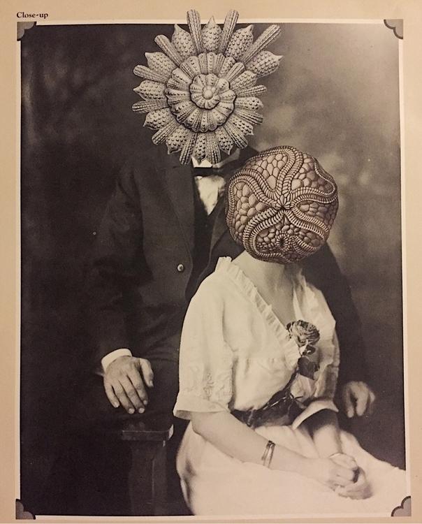 Odd Couple Bonnie Currie Arcane - arcanememory | ello