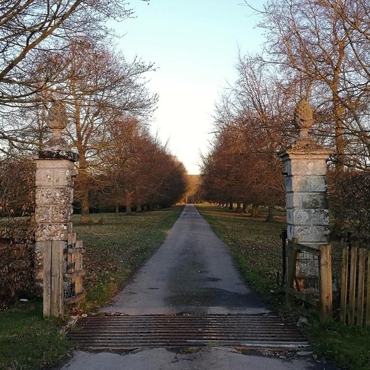 long entrance. grand promise.#h - estelleclarke | ello