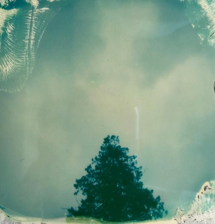 Stanley Park, III Kalamarz - polaroid - jkalamarz | ello