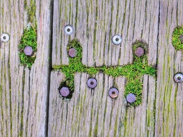 Planks Southend Pier - photography - paulbines | ello