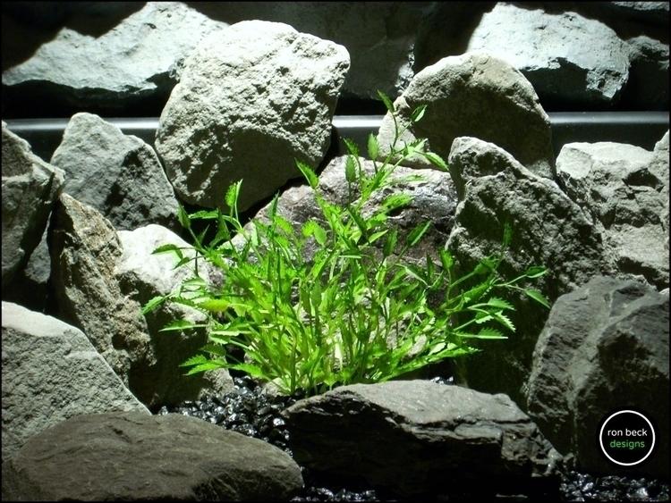 plastic aquarium decor plant: m - ronbeckdesigns | ello