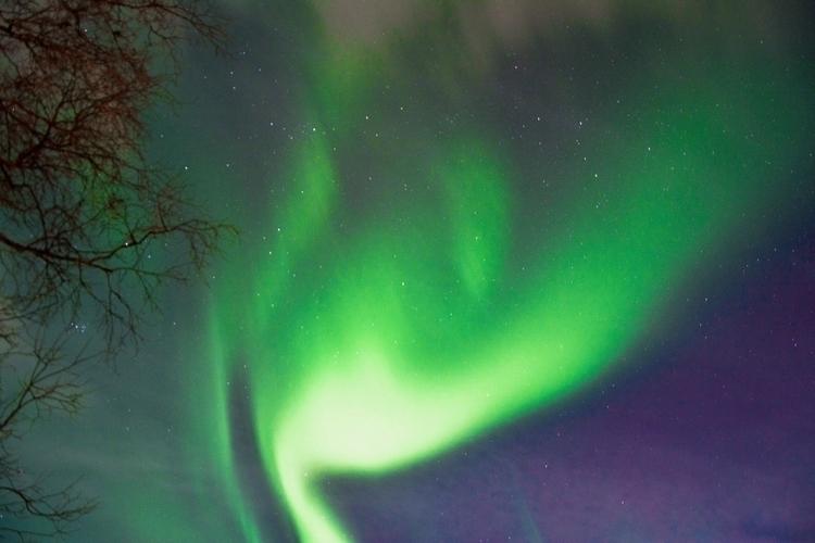 Aurora Sweden - mackiepisode | ello