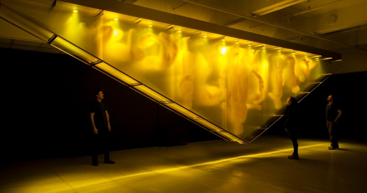 GOLD - art, installation - burakkaynak | ello