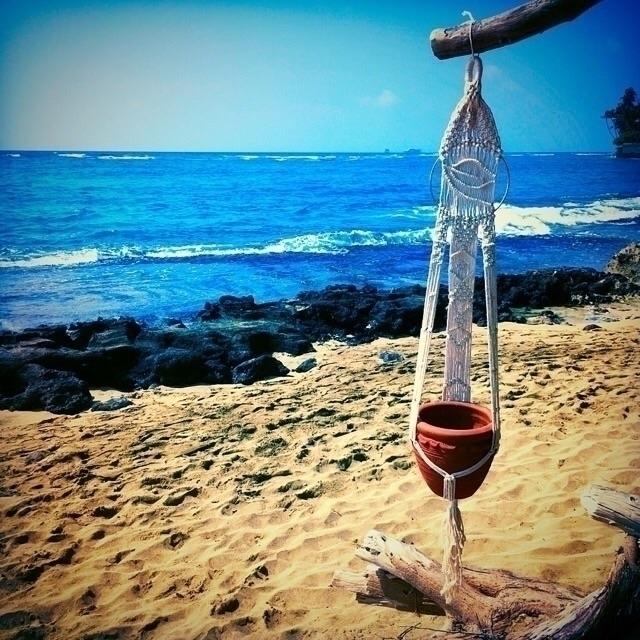 Dream higher sky deeper ocean - beach - wovenhawaii | ello