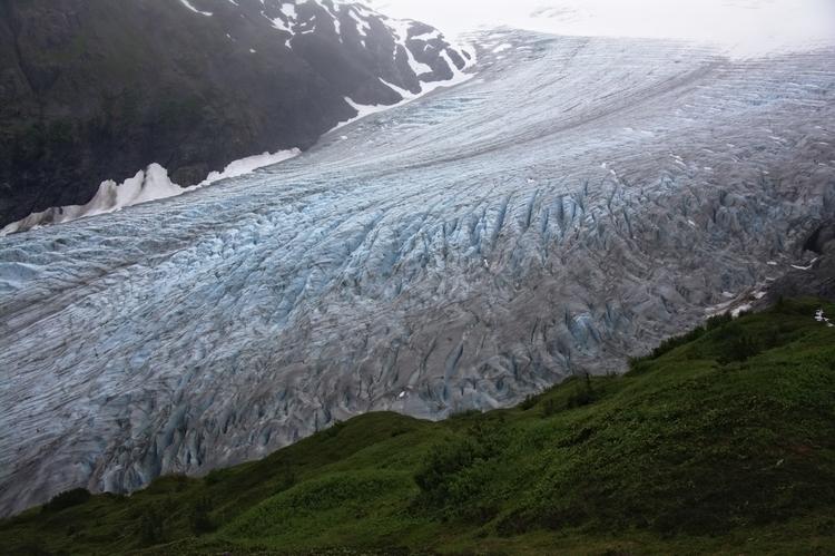 Exit Glacier Kenai Fjords Natio - lwpetersen | ello