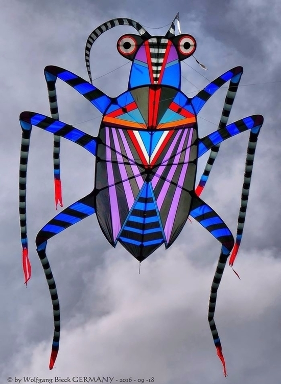 KITEROACH kite george peters - geo-mela | ello