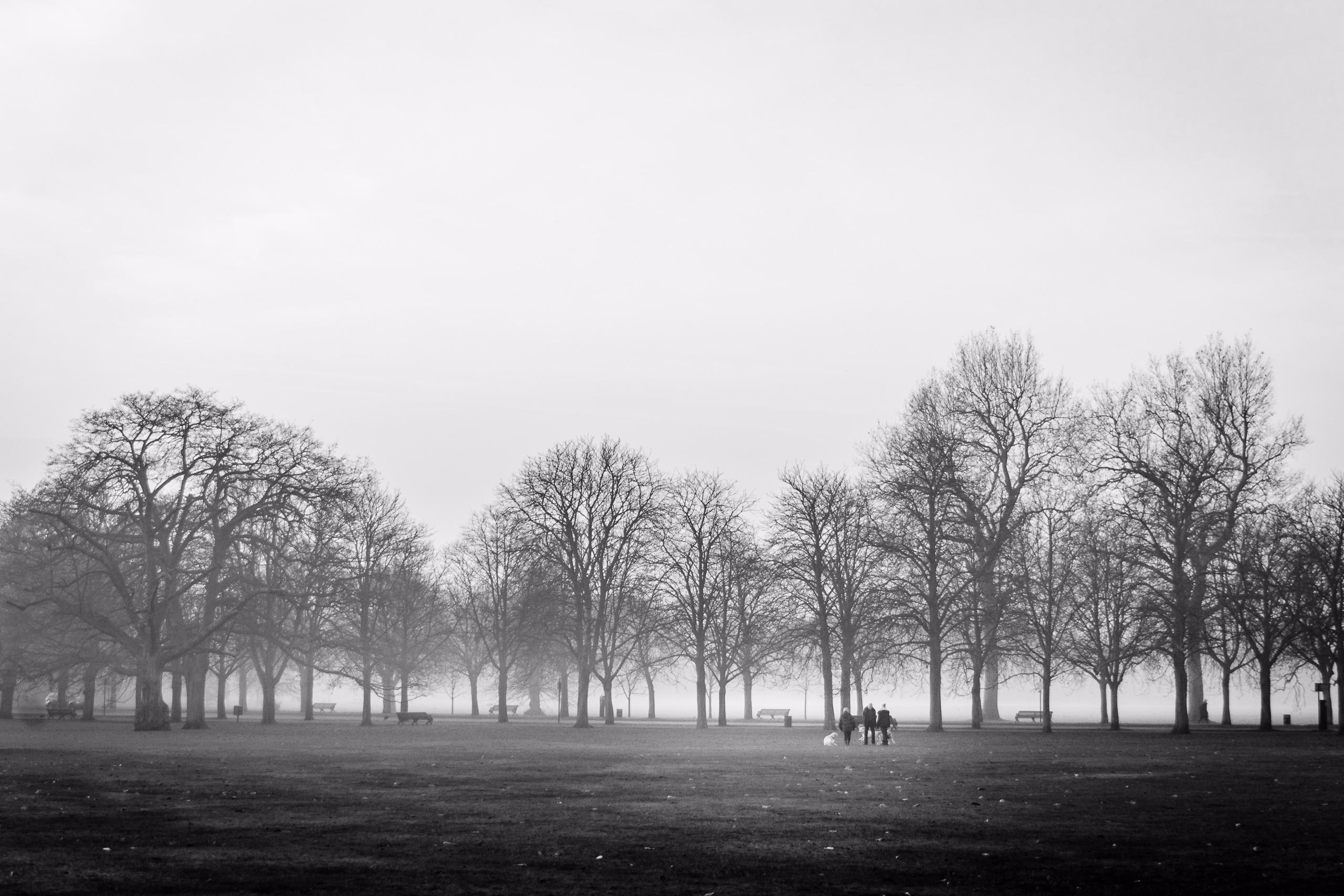 Fade White | Royal Parks - Greenwich - fabianodu | ello