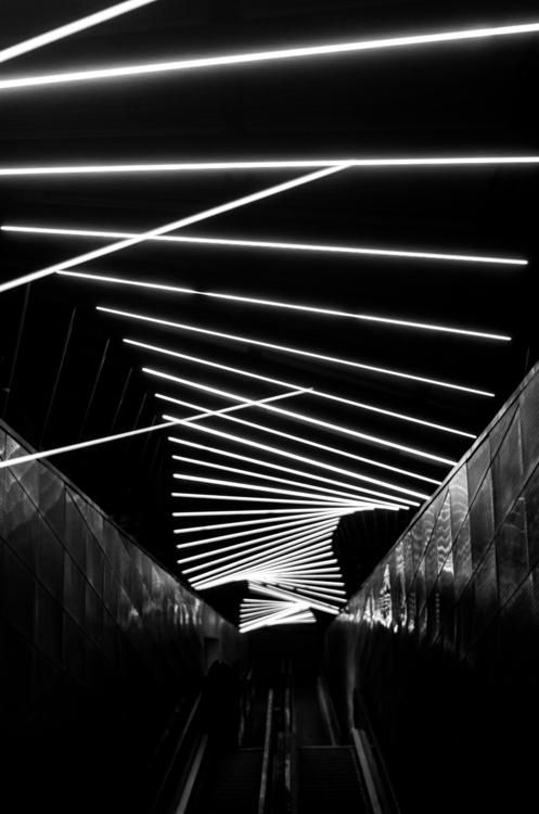 Thinning embrace - photography, blackandwhite - skhokhlov | ello