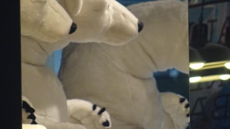 _ [ polar · bears prefer januar - hugo_barbosa | ello