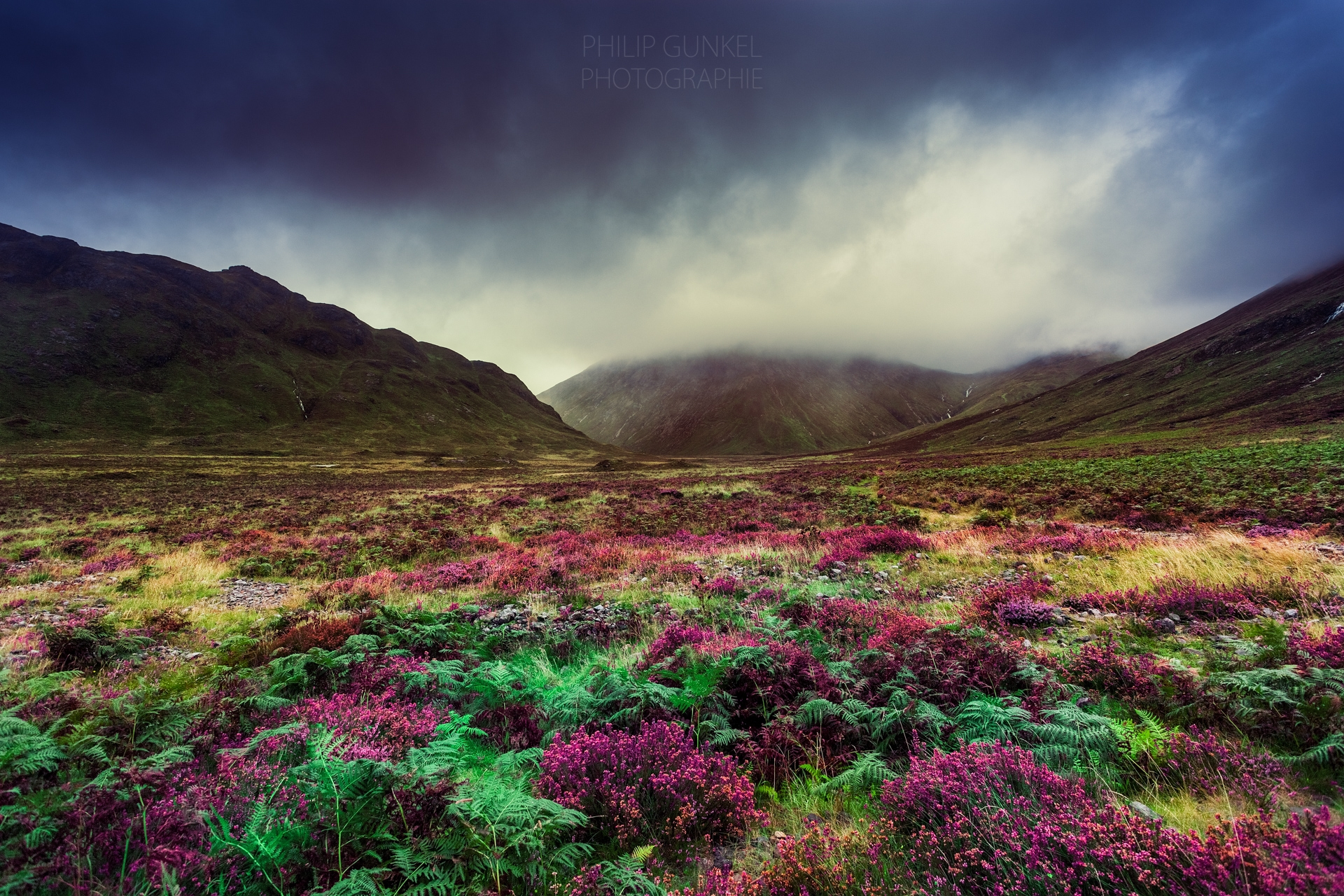 highland fairy tale - phigun | ello