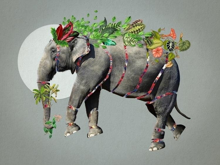 Bestiario: Elefanta Collage 047 - santasombra | ello