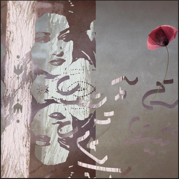 noorJahan, illustration, artist - aimen_kazmi | ello