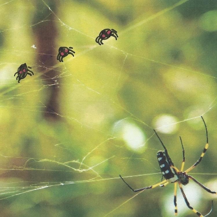"mum"" asked spiders unison. repl - littlefears | ello"