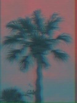 Beachside VHS Edits Photos edit - thornicus | ello