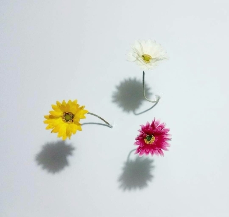 mind - flowers - anyabelomoina | ello