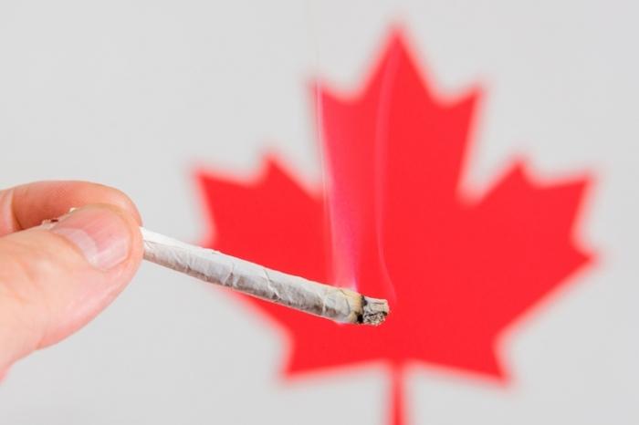 Create Medication Dull: Legalis - marijuanafloor | ello