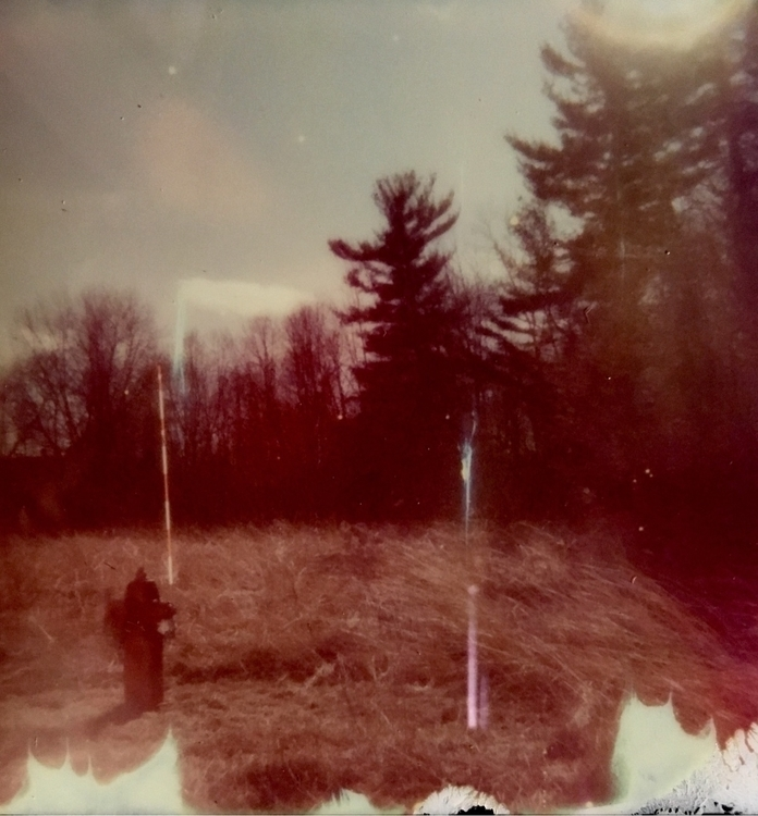 Forest Fire Hydrant - Polaroid, photography - jkalamarz | ello
