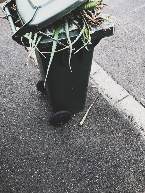 Trash day - jimmymuldoon | ello