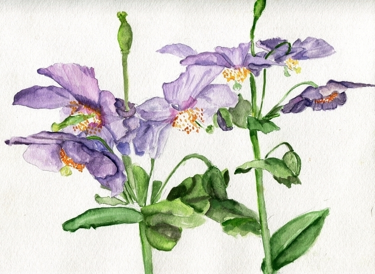 Violet Cranes Watercolor Paper  - havekat | ello