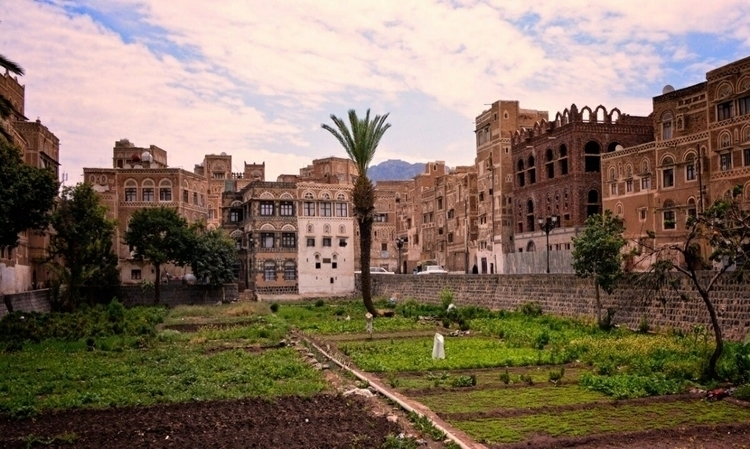 Yemen اليمن صنعاء - shaifameri | ello