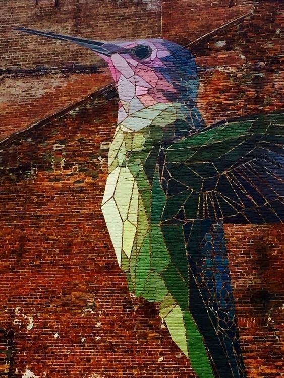 Hummingbird - hummingbird, urbanart - vstg | ello