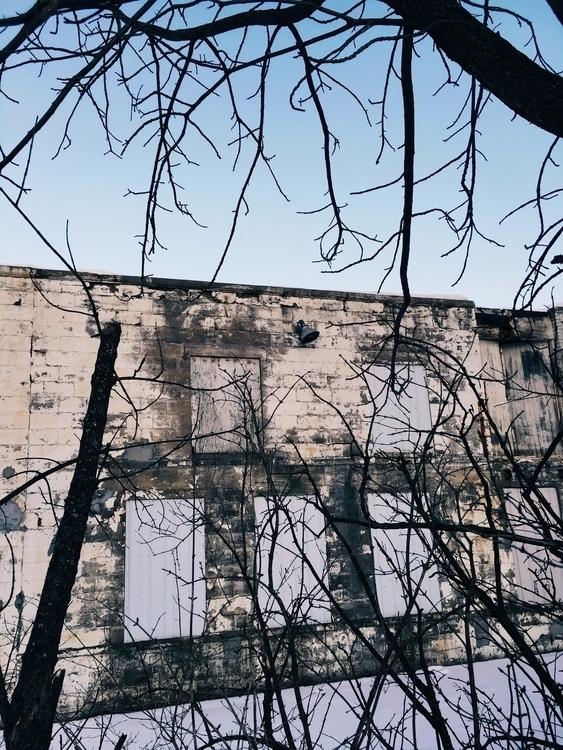 photography, winter, building - jkalamarz | ello