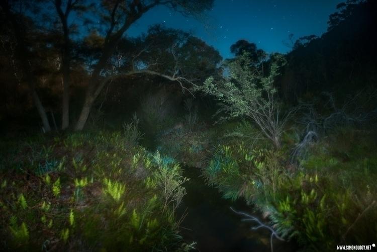 MOON NIGHTS stark cold light (f - simonology   ello