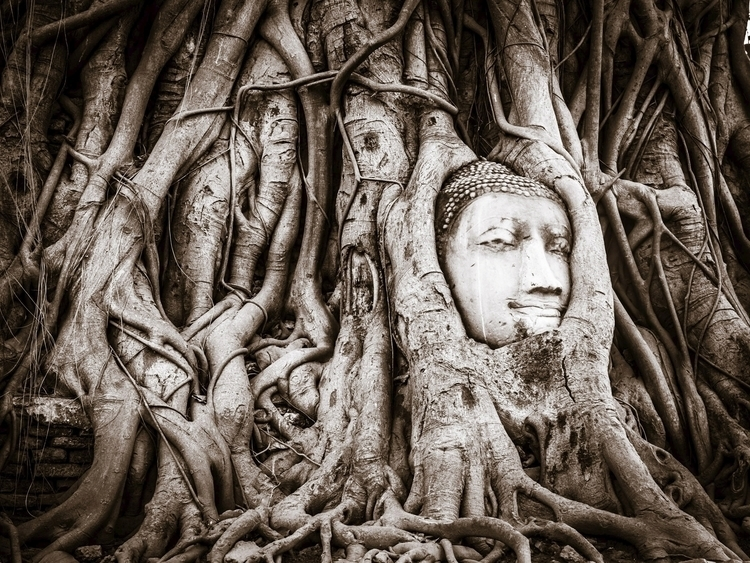 Ayuttaya Lost Buddhist Kingdom - travischau | ello