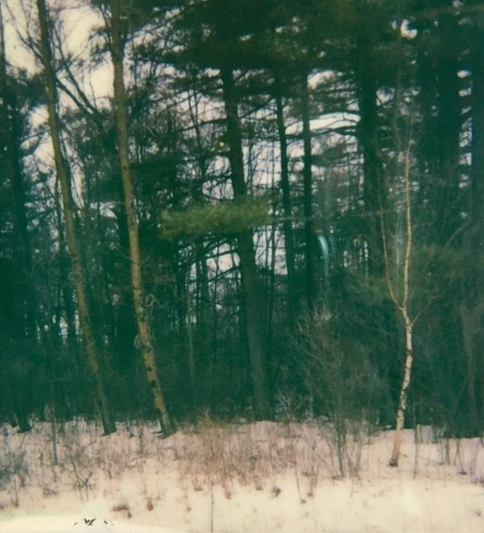 Polaroid, photography, instantfilm - jkalamarz | ello