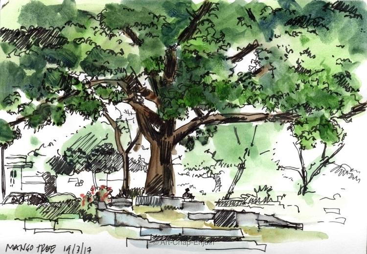 - Mango tree ink watercolour sk - artchapenjoin | ello