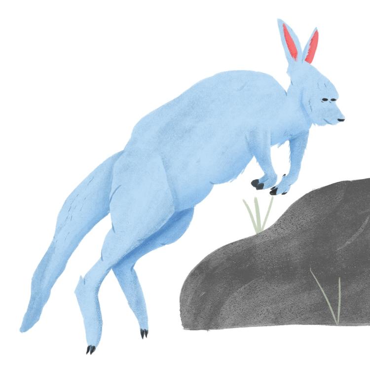 kangaroo emoji - illustration - erickmramos | ello