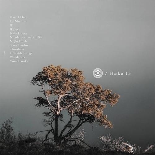 Naviar Records Haiku 13 / petal - kashyapi   ello
