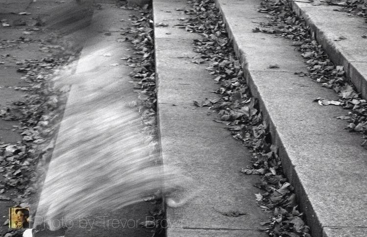 Blur Photo Trevor Brown - trevorbrown - trevor_brown_artist | ello