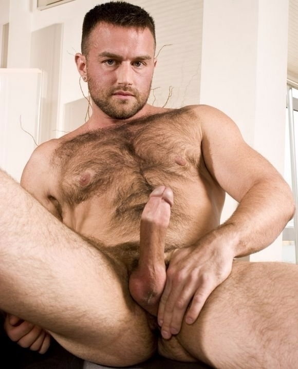 boy-free-hairy-man-pics-movies-junior-girl-pictures