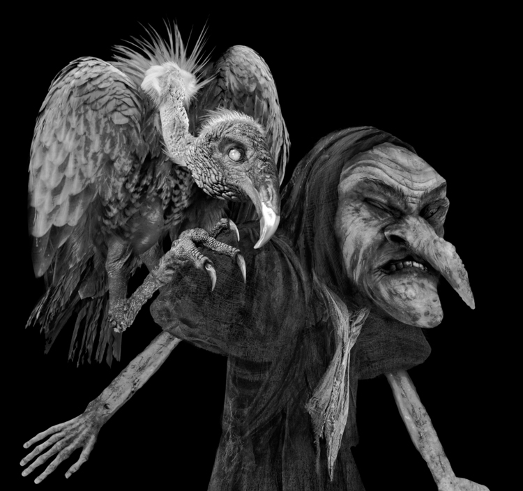 detail Sea Hag vulture familiar - aeronalfrey | ello