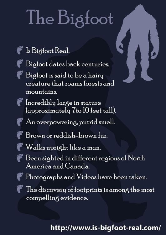 Bigfoot Real mysterious urban l - lisadavis09 | ello