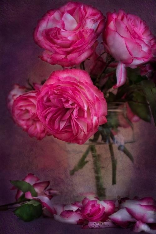 bouquet flowers sweet neighbour - yasminsimpson | ello