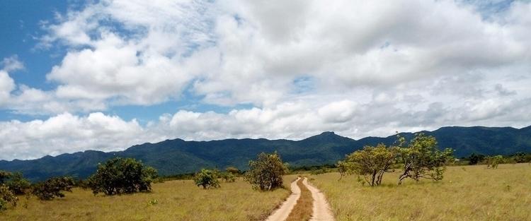 South Rupununi, Guyana Anna - guyfrog16 | ello