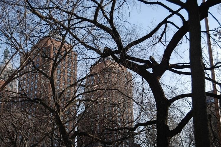 city sleeps mid January, years  - itsduchess | ello