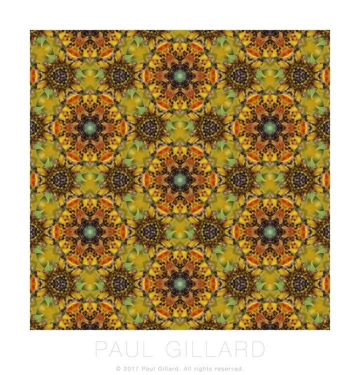 Tiled pattern created photo sun - paulgillard | ello