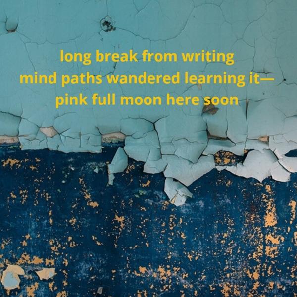 Pamir Kiciman 2017 | - poem, poetry - wabi__sabi | ello