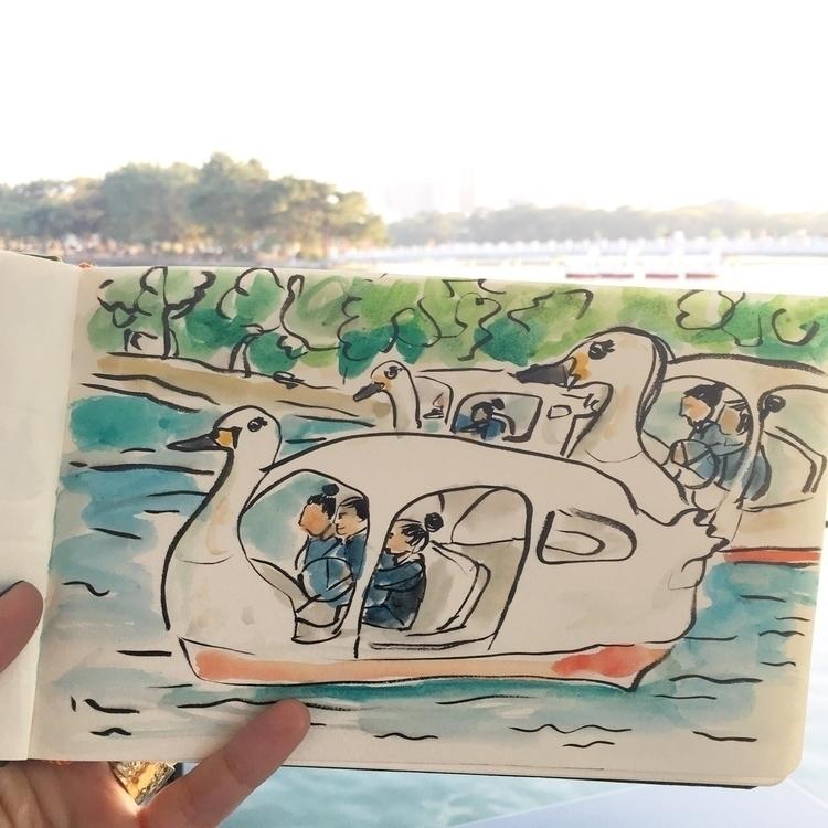 Office ladies swan paddle boats - chenreichert   ello