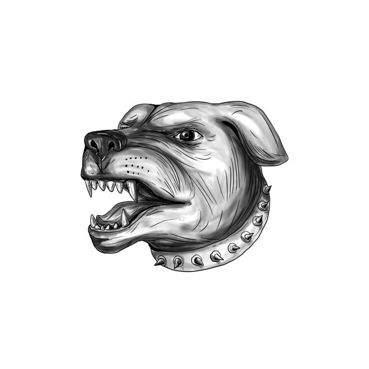 Head - Rottweiler, Dog, Growling - patrimonio | ello