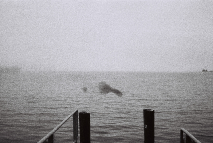 suicide ghost Montreux October - betanialiberato | ello