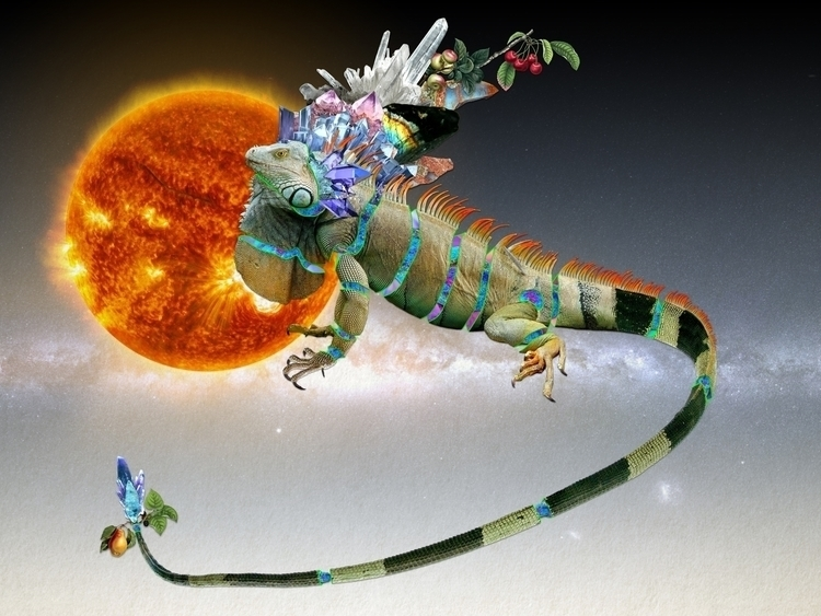 Bestiario: Iguana 40X30 collage - santasombra | ello
